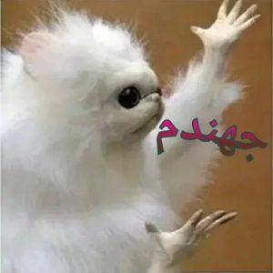 روشهای عوضی شدن - Mohsen Elhamian - MohsenElhamian.com - سایت شخصی محسن الهامیان