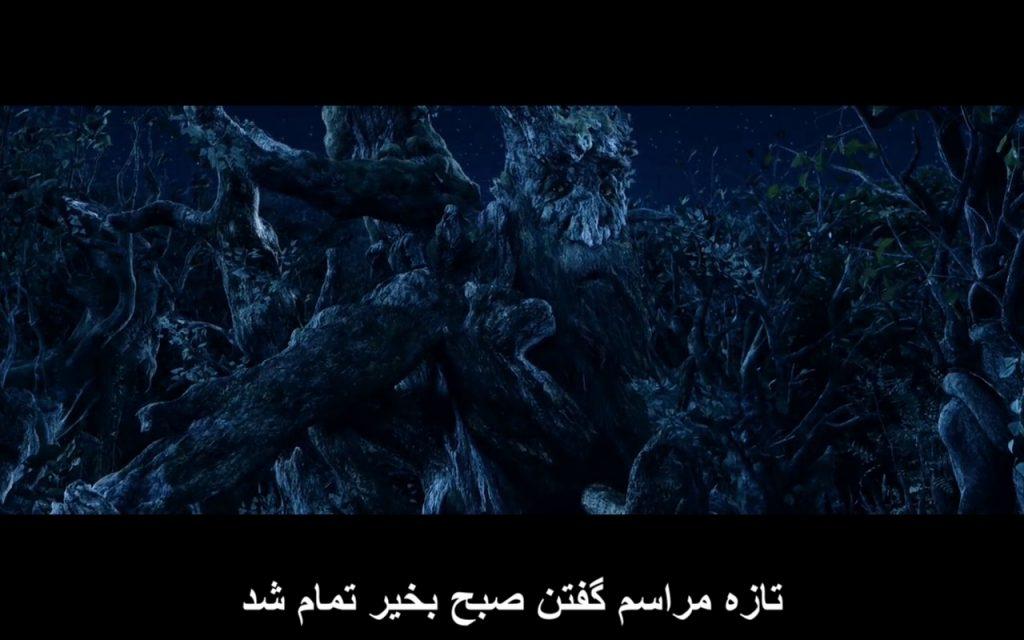 چرا موجودات فضایی با ما ارتباط برقرار نمی کنند - انتها - مردمان درختی - درخت ریشو - Mohsen Elhamian - MohsenElhamian.com - محسن الهامیان
